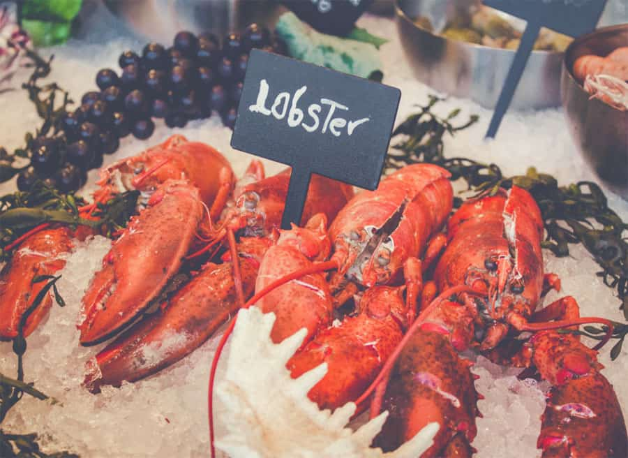 Fresh lobster on ice - fish and seafood smoking times