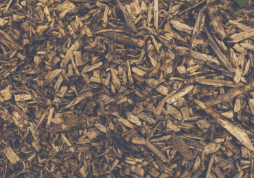 Picture covered with brown wood chips - what wood is good for smoking